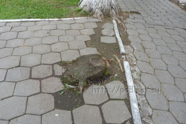 Дзержинский_P1010937.JPG